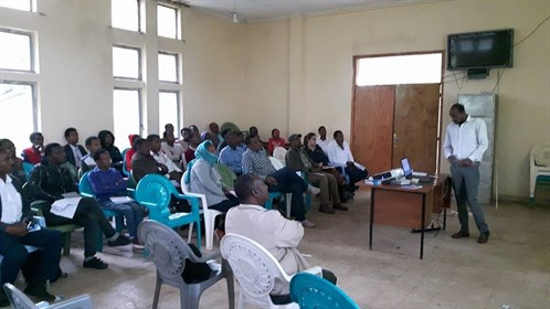 Quality Improvement Teams In Shebedino