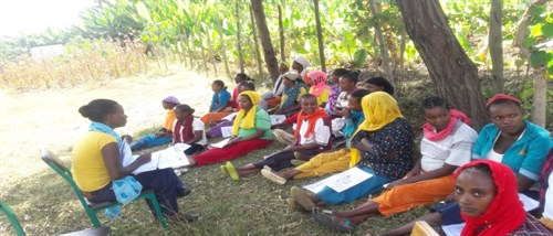 Pregnant Women Forum In Shebedino Woreda Nure Dulecha Health Post